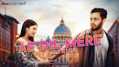 Ae Dil Mere Lyrics - Shahzeb Tejani | Gaana Lyrics Point