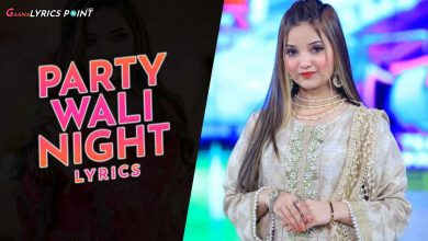 Party Wali Night Lyrics - Rabeeca Khan (TikToker) - Pakistani Lyrics